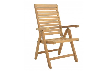 Ashley Reclining/Folding Chair